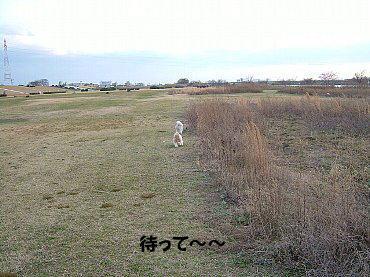 image644.jpg