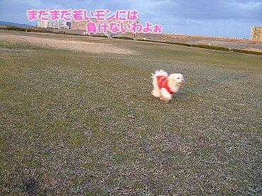 image645.jpg