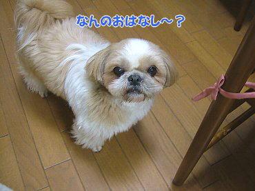 image664.jpg