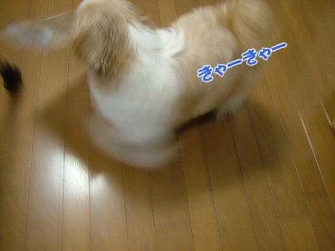 image665.jpg