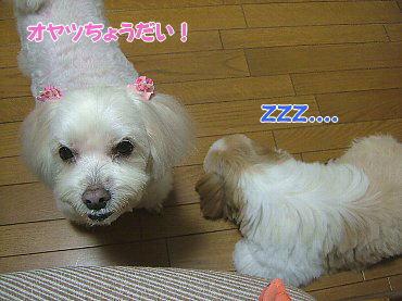 image679.jpg
