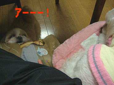 image692.jpg