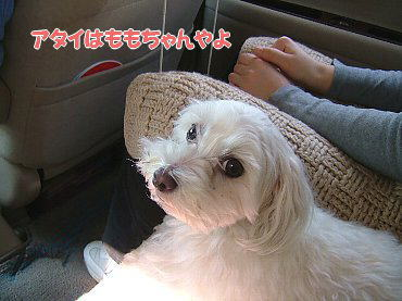 image705.jpg