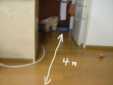 image719.jpg