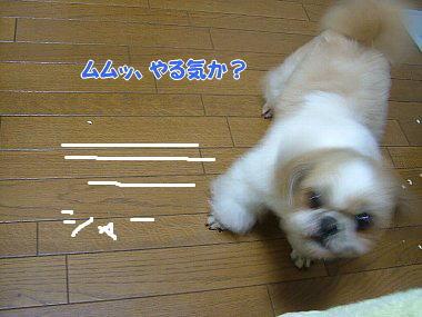 image773.jpg
