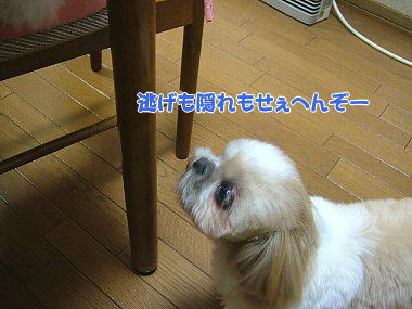 image775.jpg