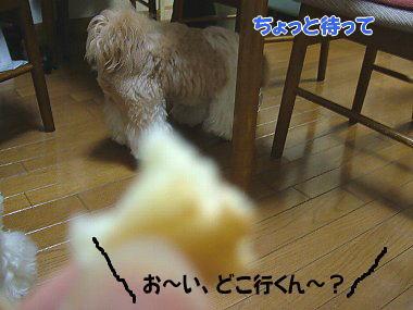 image792.jpg