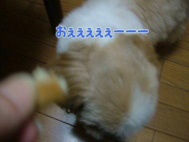 image795.jpg