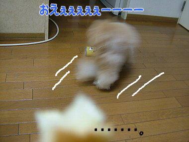 image796.jpg