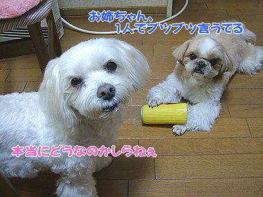 image811.jpg