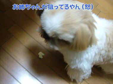 image824.jpg