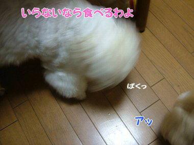 image826.jpg