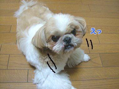 image829.jpg