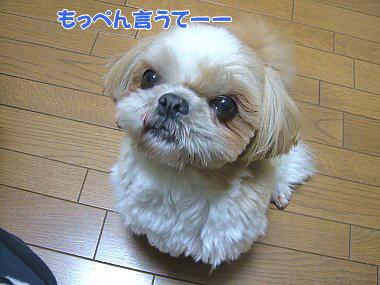 image830.jpg