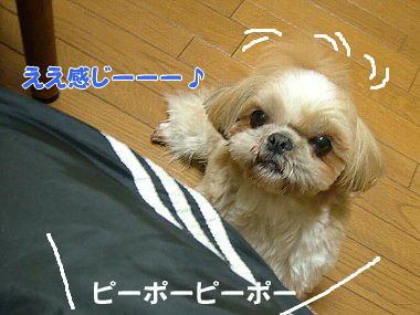 image832.jpg