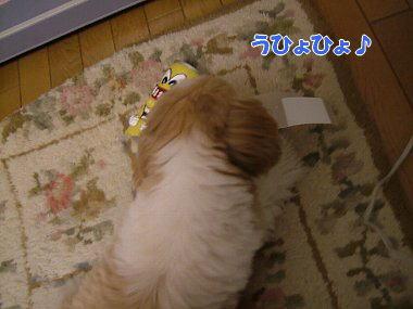 image846.jpg