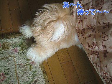 image849.jpg