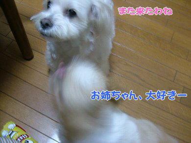 image870.jpg
