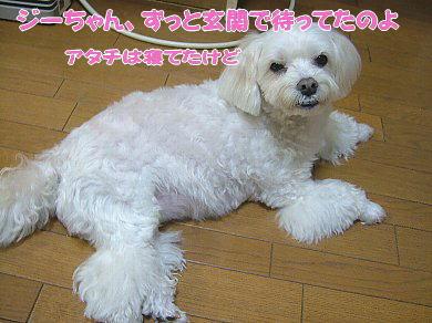 image881.jpg