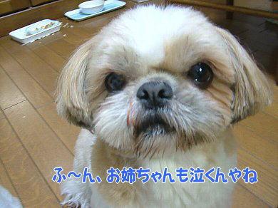 image898.jpg