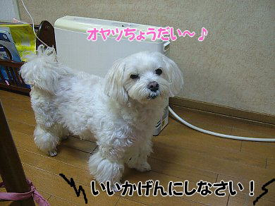 image915.jpg