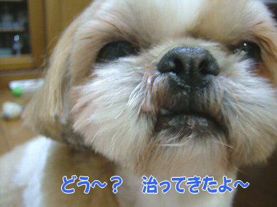 image927.jpg