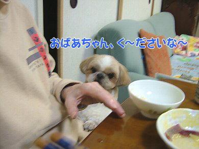 image929.jpg
