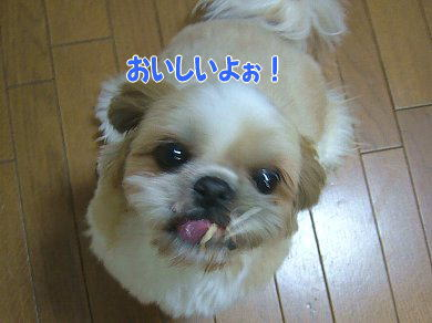 image938.jpg