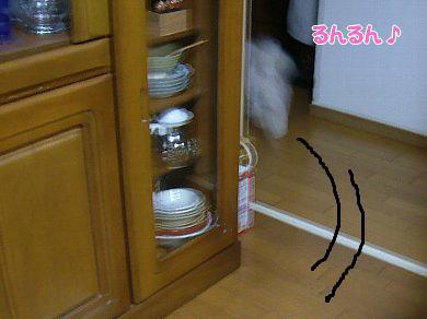 image940.jpg