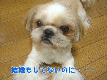 image97.jpg
