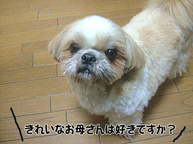 image983.jpg