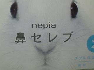 20050130.jpg