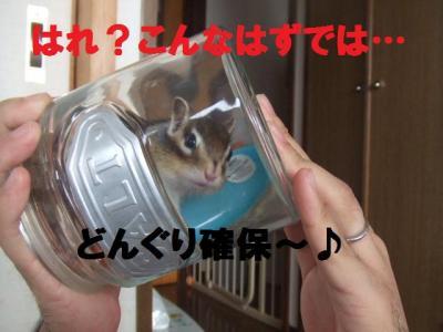 001_convert_20091228114015.jpg
