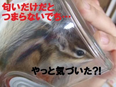 003_convert_20091228114052.jpg