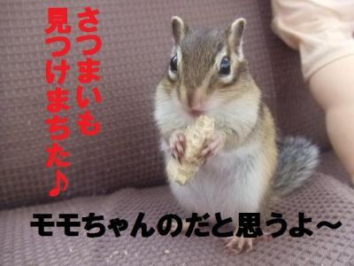 013_convert_20091021194935.jpg