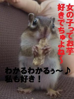 014_convert_20091021194955.jpg