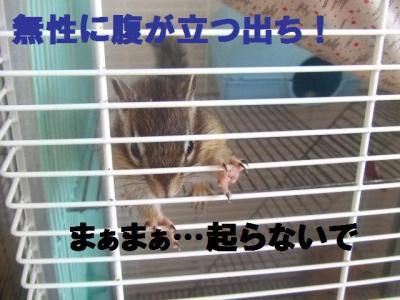 018_convert_20091004180803.jpg
