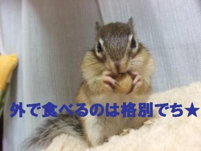 018_convert_20091029060805.jpg