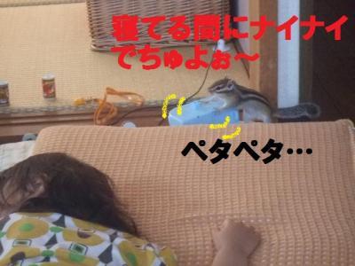 020_convert_20090924103529.jpg