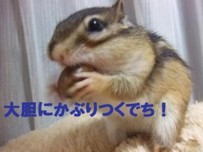 020_convert_20091029060829.jpg