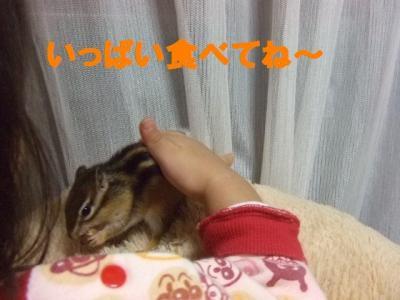 021_convert_20091029060900.jpg