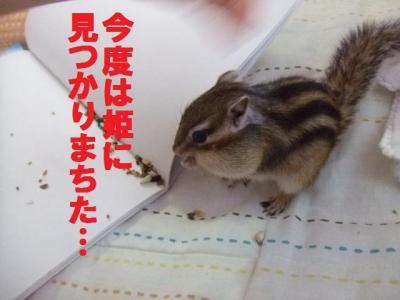 022_convert_20091024081557.jpg