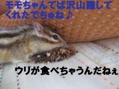 023_convert_20090924103622.jpg