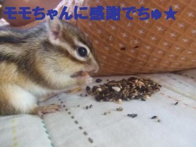 024_convert_20090924103725.jpg