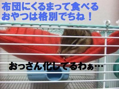 024_convert_20091006112117.jpg