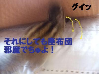 025_convert_20090924103706.jpg