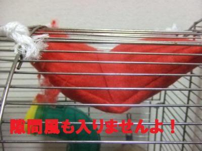 027_convert_20091006112216.jpg