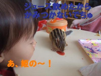 031_convert_20091117123110.jpg