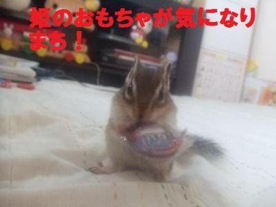 040_convert_20090921104818.jpg