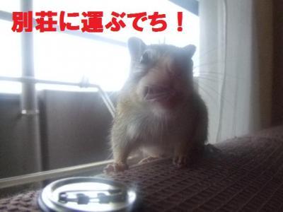 044_convert_20090921104911.jpg